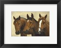 Framed 3 Horses