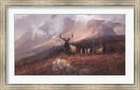 Framed Bookcliffs Elk II