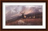 Framed Bookcliffs Elk II