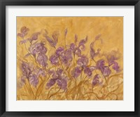 Framed Irises I
