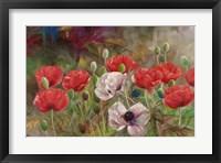 Poppies III Framed Print