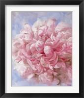 Framed Pink Peonie I