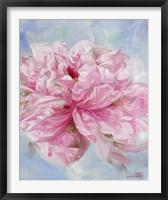 Pink Peonie II Framed Print