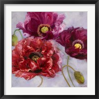 Framed Purple Poppies II