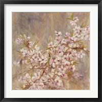 Framed Cherry Blossom I