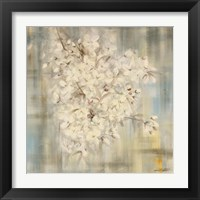 Framed White Cherry Blossom I