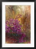 Framed Campanula I