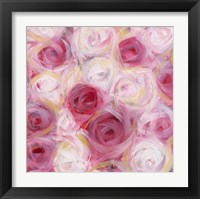 White and Pink Roses Framed Print