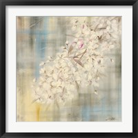 Framed White Cherry Blossom II