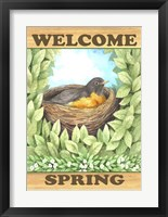 Framed Welcome Spring Robin
