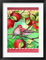 Framed Red Finches With Apples