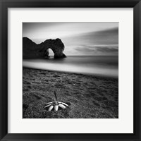 Framed Durdle Feather