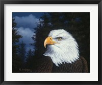 Framed Face Of Freedom