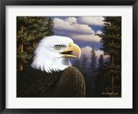 Proud & Free Framed Print