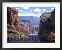 Framed Nature's Way