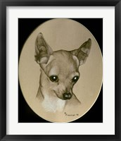 Framed Dog Nine