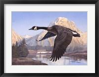 Framed Goose Mtn
