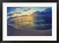Cypress Sunrise III Framed Print