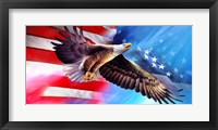 Framed American Eagle Flag