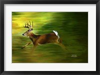 Framed Running Deer