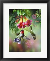 Framed Summer Hummer