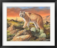 Framed Sonoran King