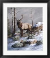 Framed Cold Ridge Watcher
