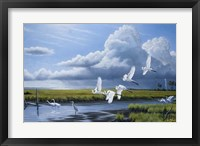 Framed Summer Storm Egrets