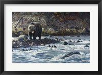 Framed Along The Yellowstone - Grizzly