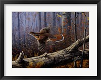 Framed Windfall Glider - Ruffed Grouse