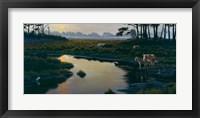 Framed Assateague Sunset