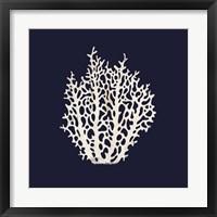 Framed Contemporary Coastal Coral