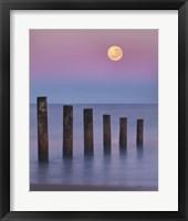 Framed Moana Moon