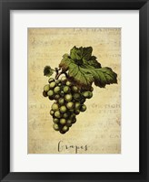Framed Grapes 2