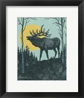 Framed Moose 3