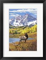 Framed Elk 3