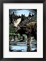 Framed Moose 5