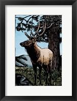 Framed Elk 4