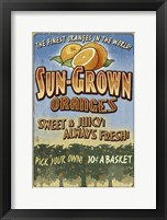 Framed Sun Grown Oranges