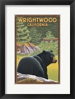 Framed Wrightwood