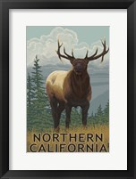 Framed Northern California