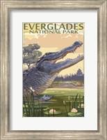 Framed Everglades 2