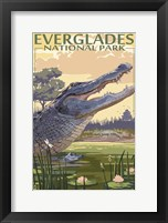 Everglades 2 Framed Print