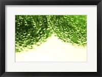 Framed Limes