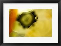 Framed Psycho Swirl