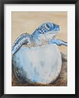 Framed Sea Turtle Hatching