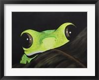 Framed Peeking Frog