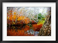 Framed Fall Pond Colors 3