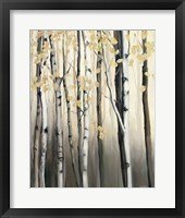 Framed Golden Birch II