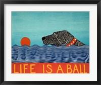 Framed Life is a Ball Black